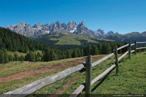 Trentino Wine Region